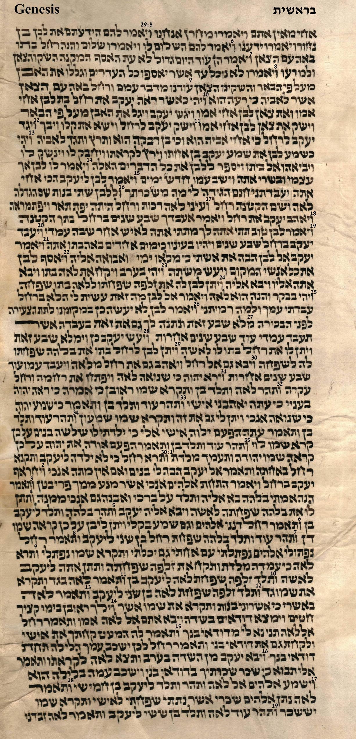 Genesis 29.5 - 30.20