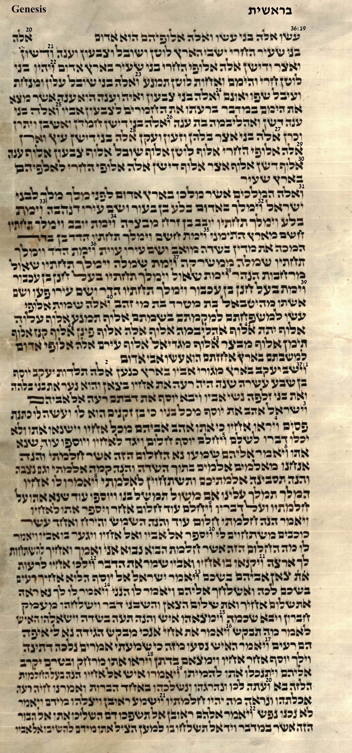 Genesis 36.19 - 37.22