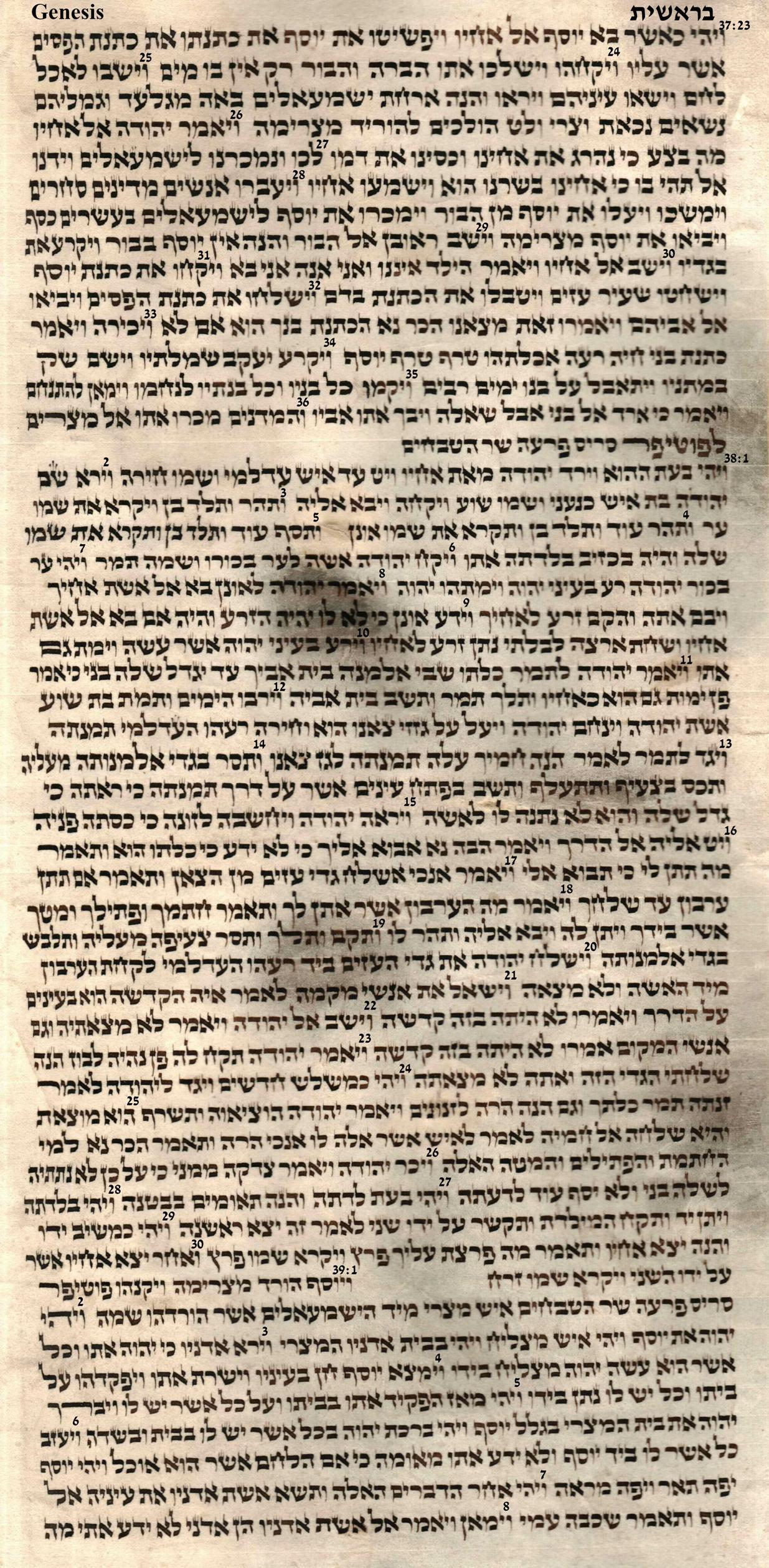 Genesis 37.23 - 39.8