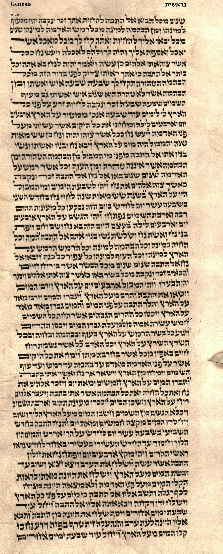 Genesis 6.19 - 8.12