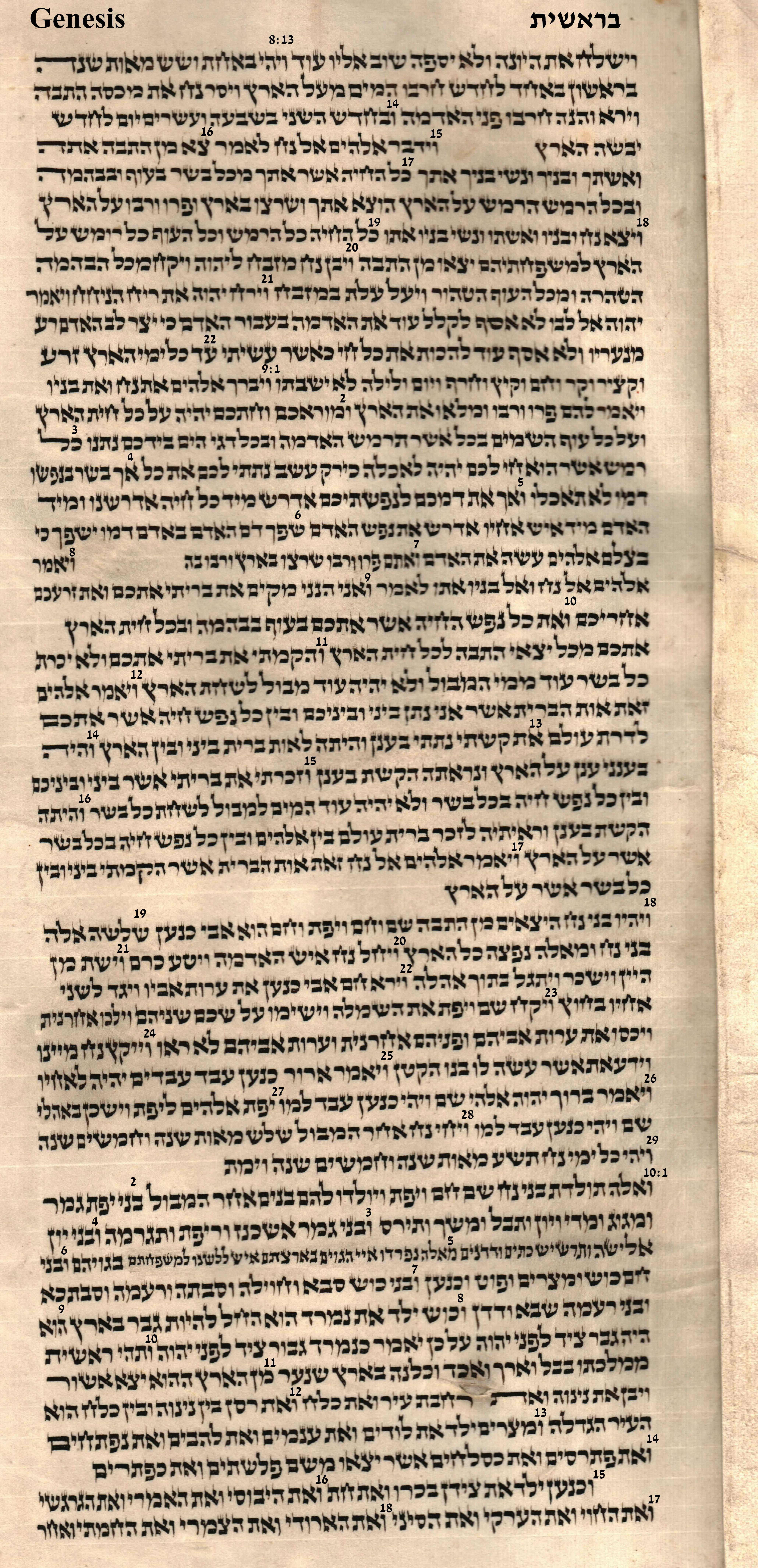 Genesis 8.13 - 10.18