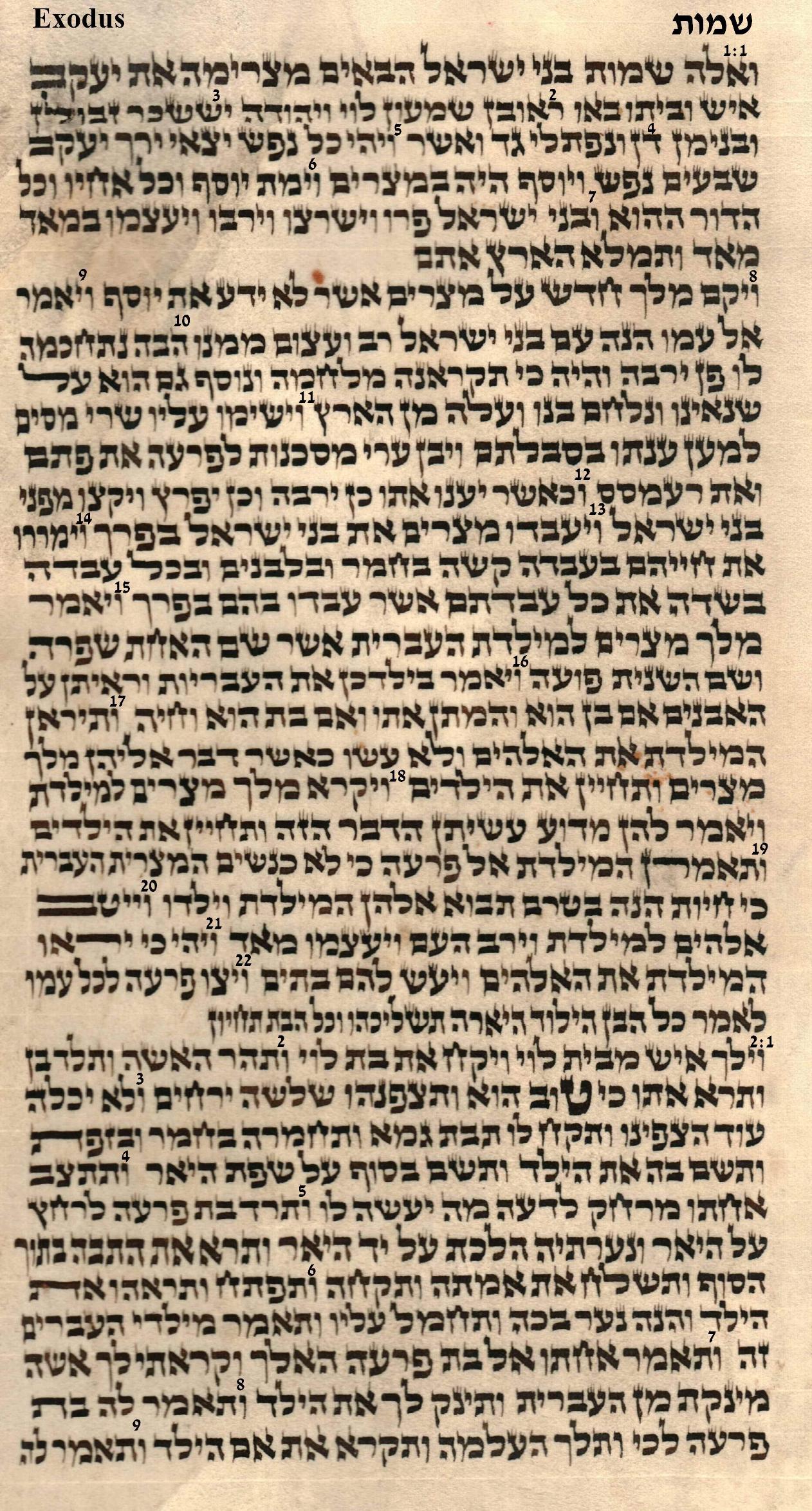 Exodus 1.1 - 2.9