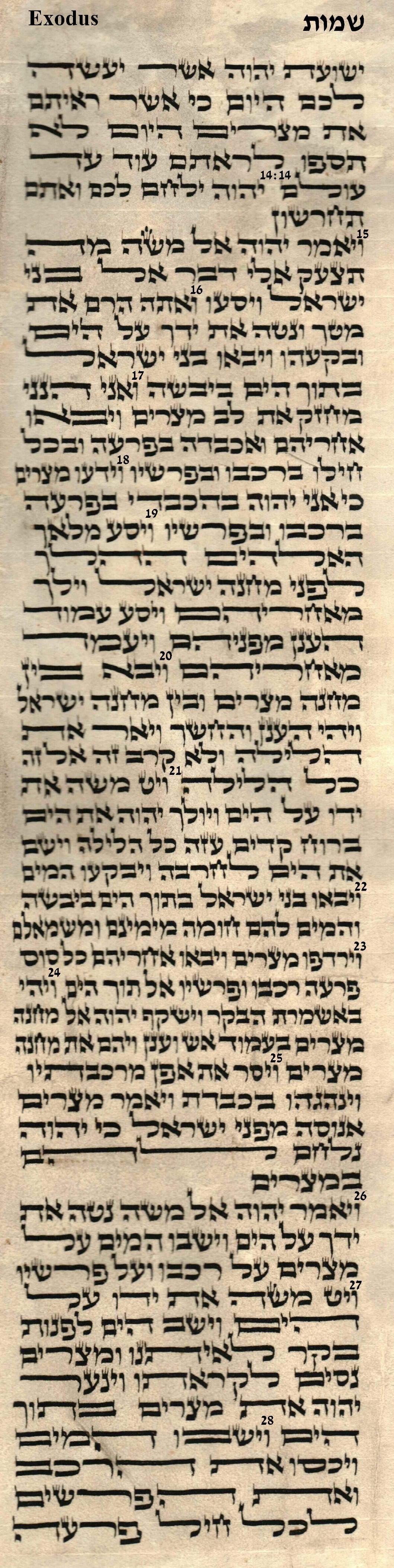 Exodus 14.14 - 14.28