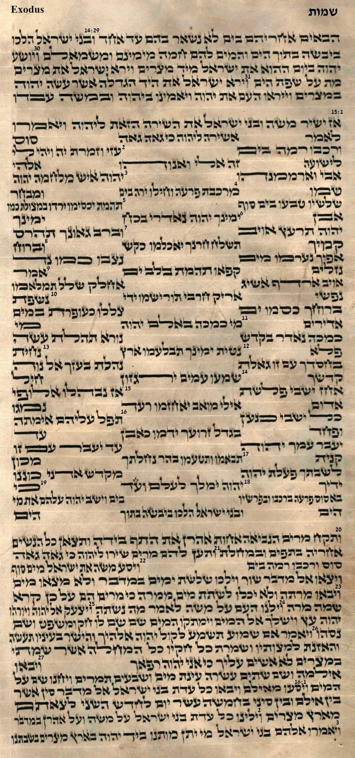 Exodus 14.29 - 16.3