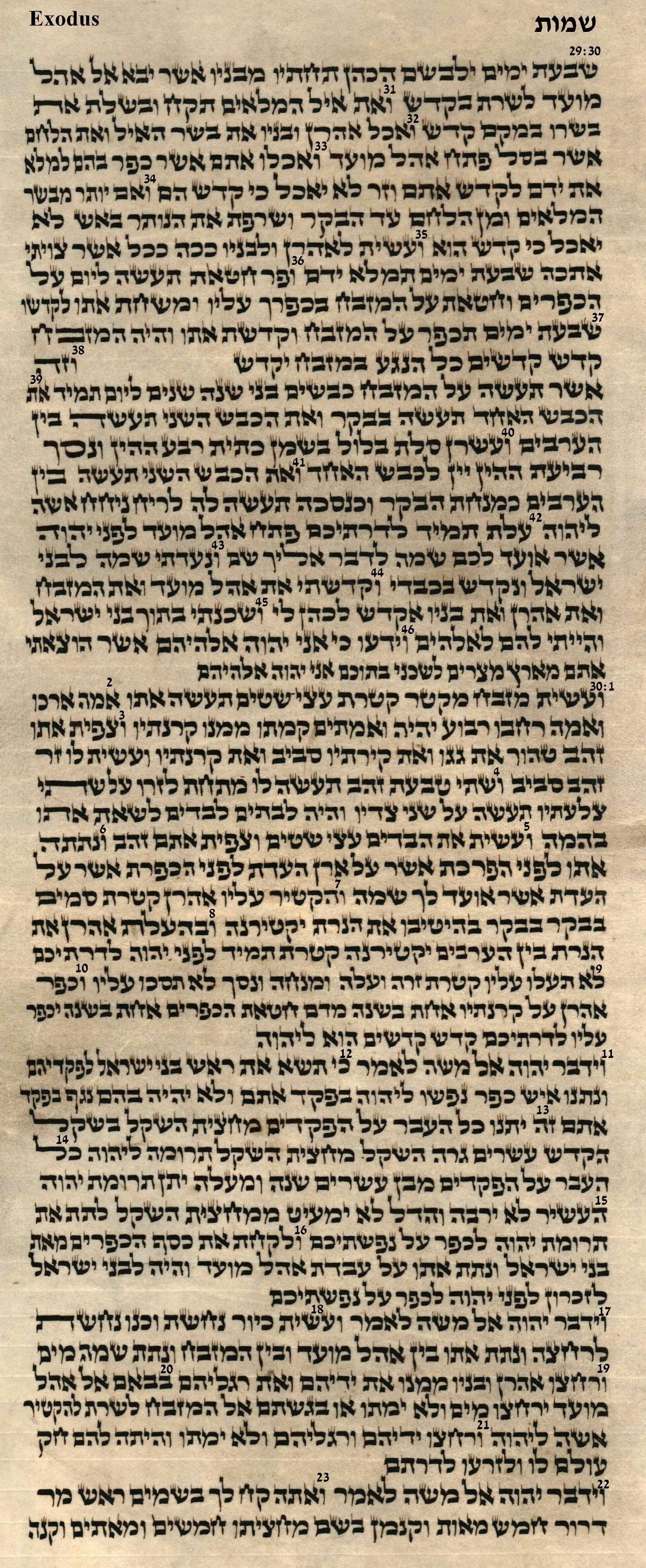 Exodus 29.30 - 30.23