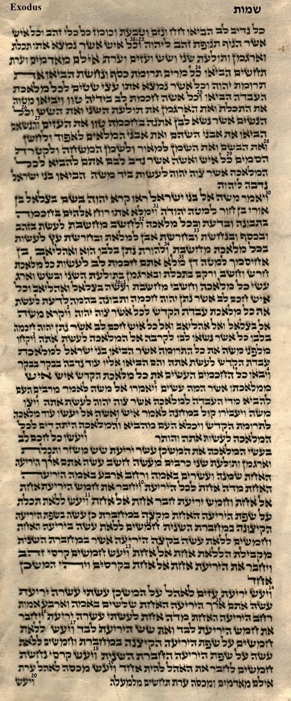 Exodus 35.23 - 36.20