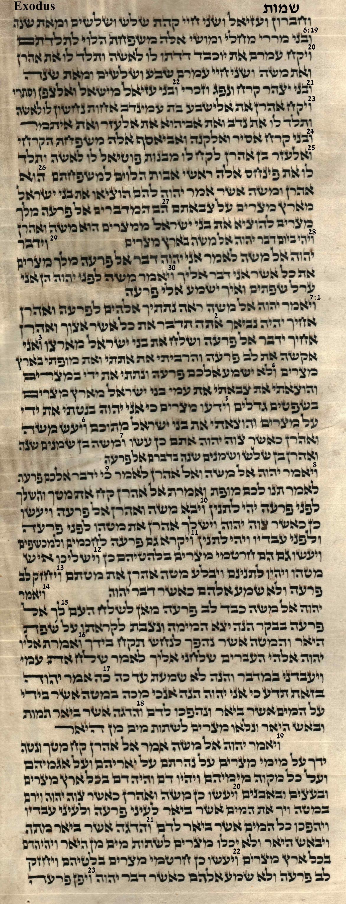 Exodus 6.19 - 7.23