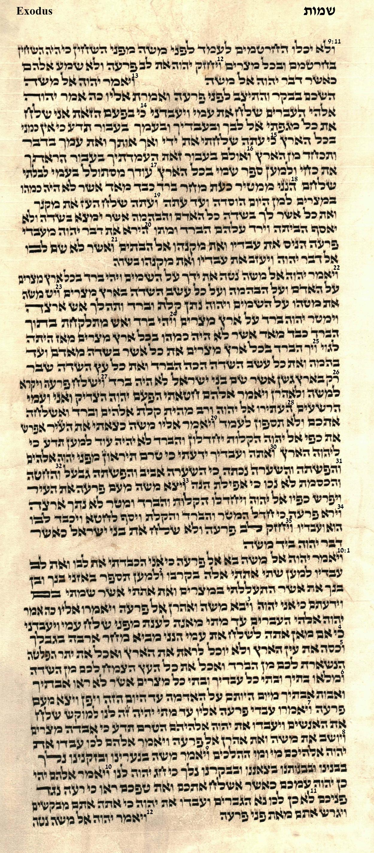 Exodus 9.11 - 10.12