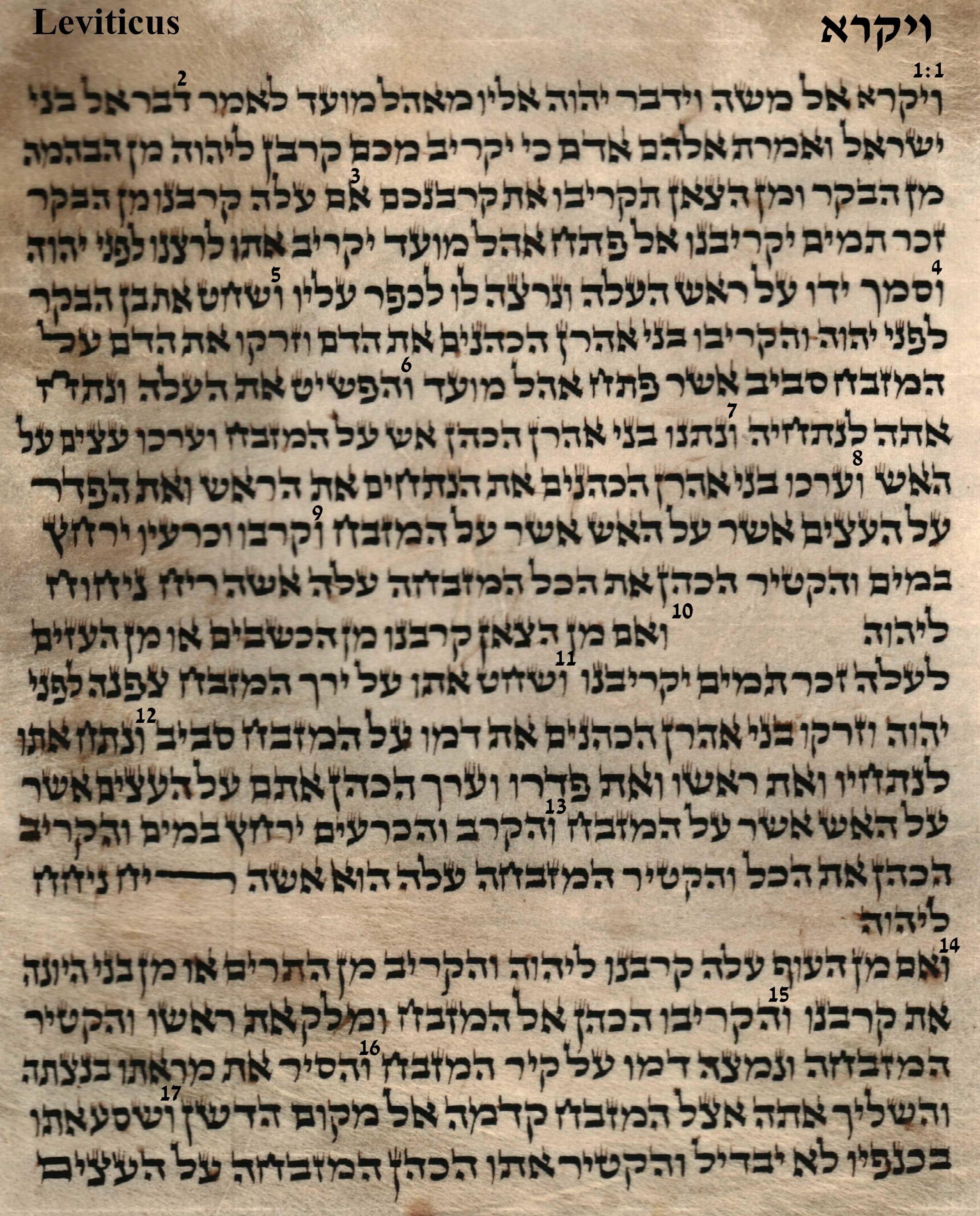 Leviticus 1.1 - 1.17
