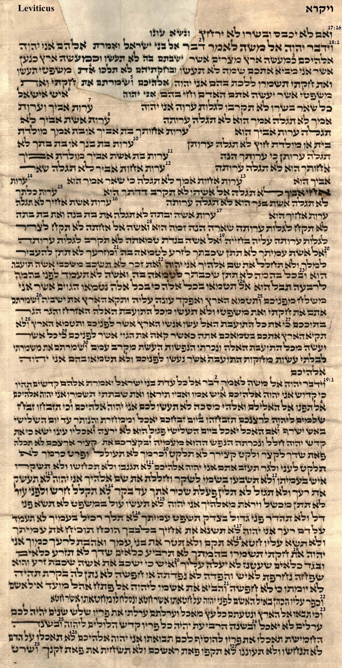 Leviticus 17.16 - 19.28