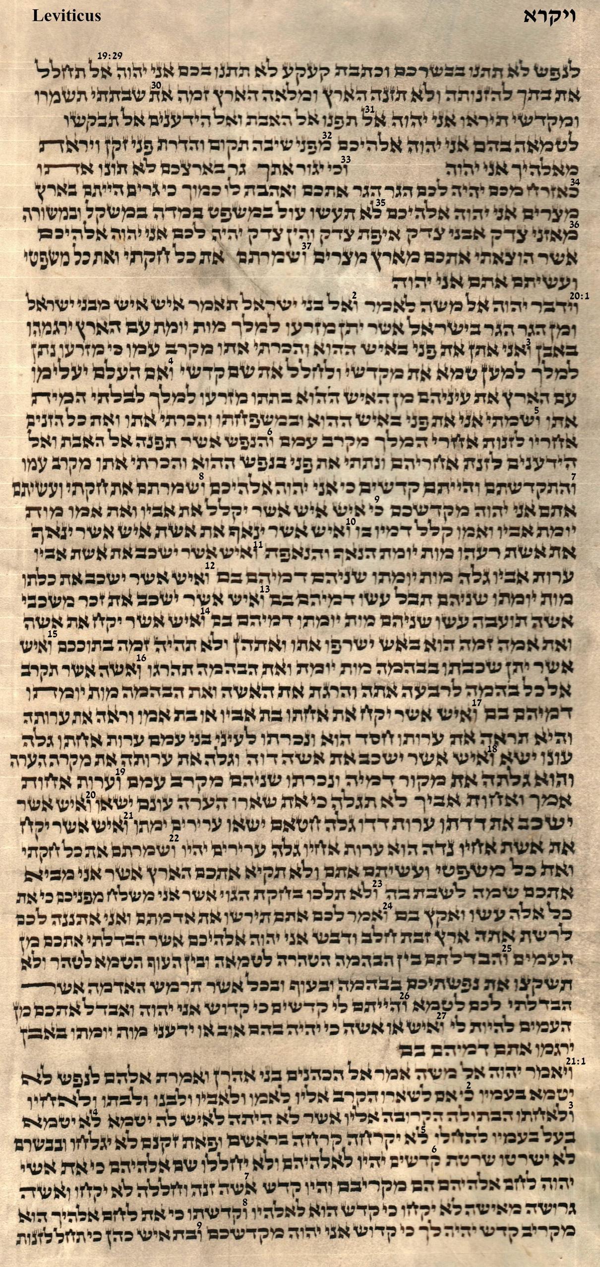 Leviticus 19.29 - 21.9