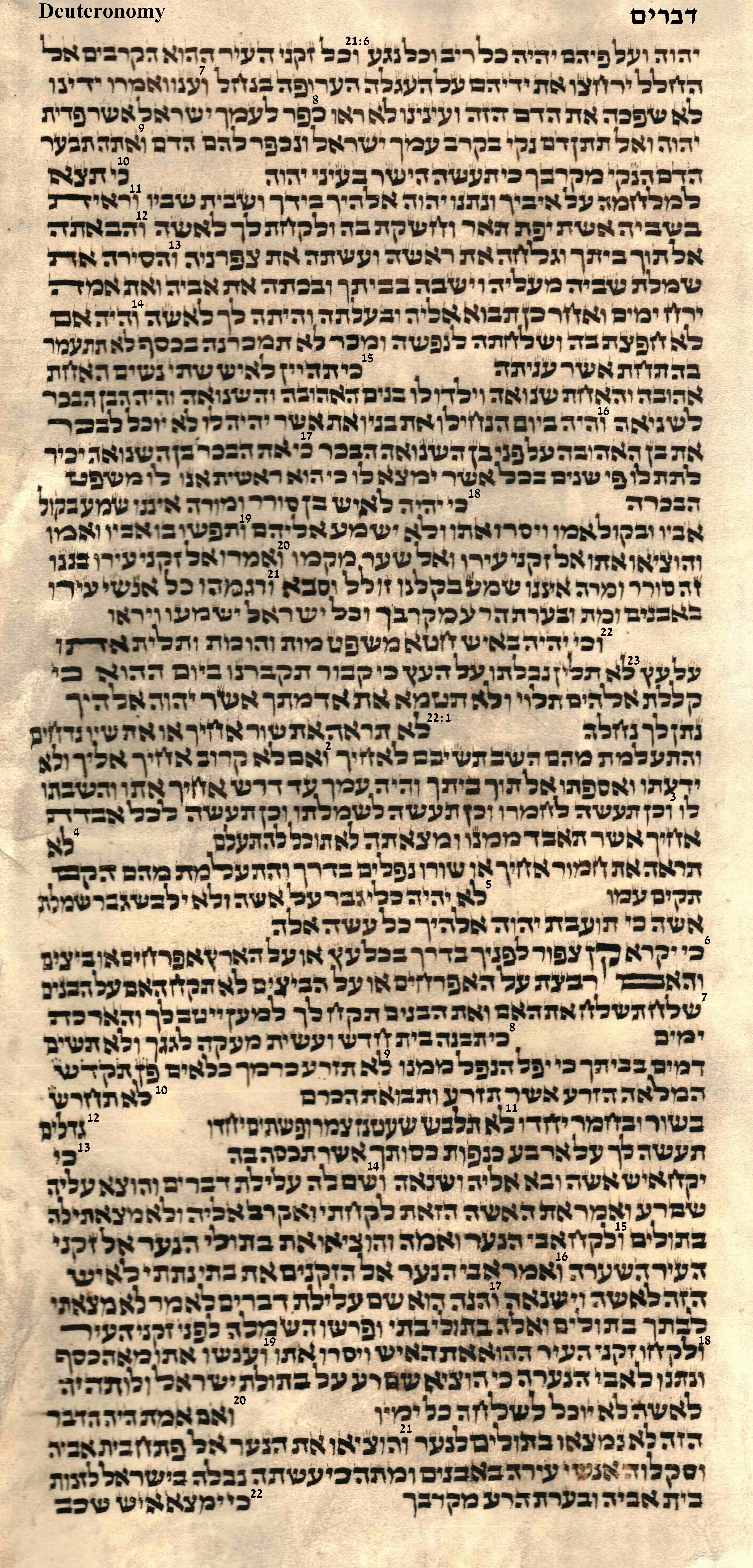 Deuteronomy 21.6 - 22.22