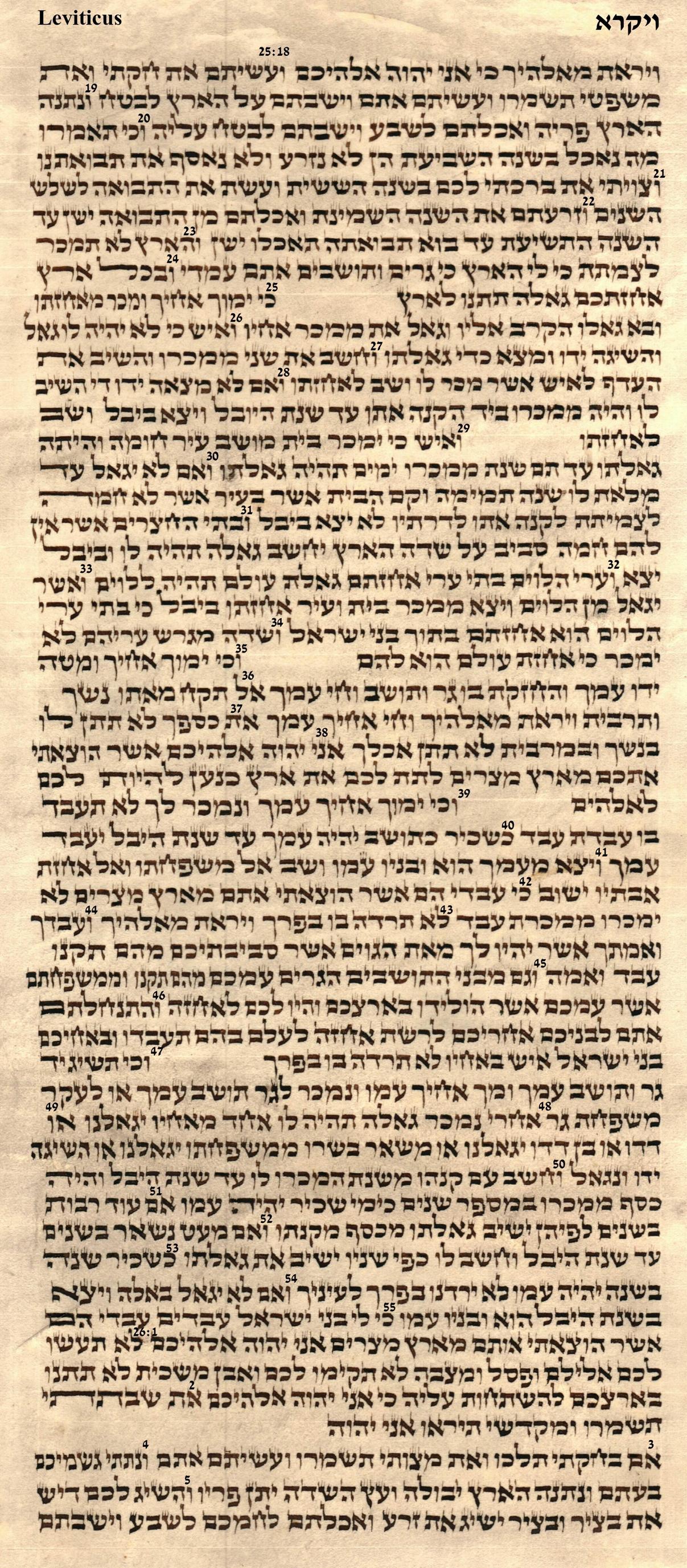 Leviticus 25.18 - 26.5
