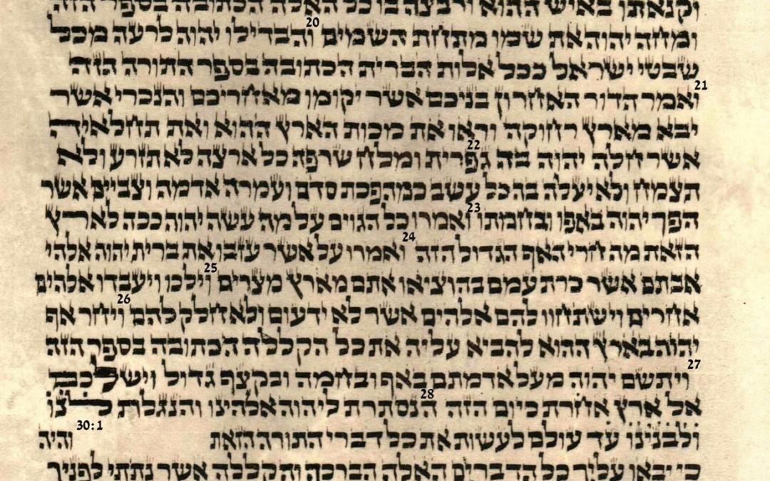 Deuteronomy 29.8 – 30.14