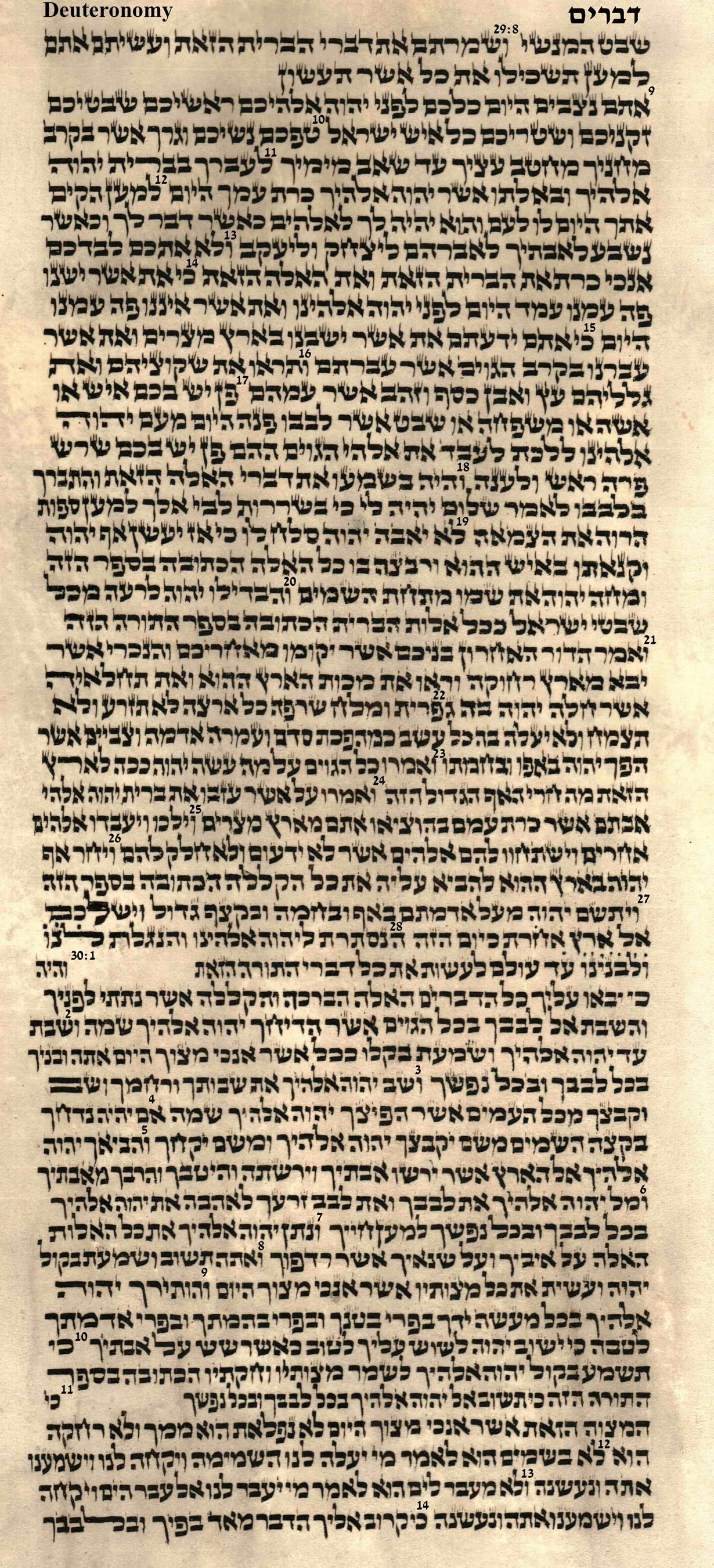 Deuteronomy 29.8 - 30.14