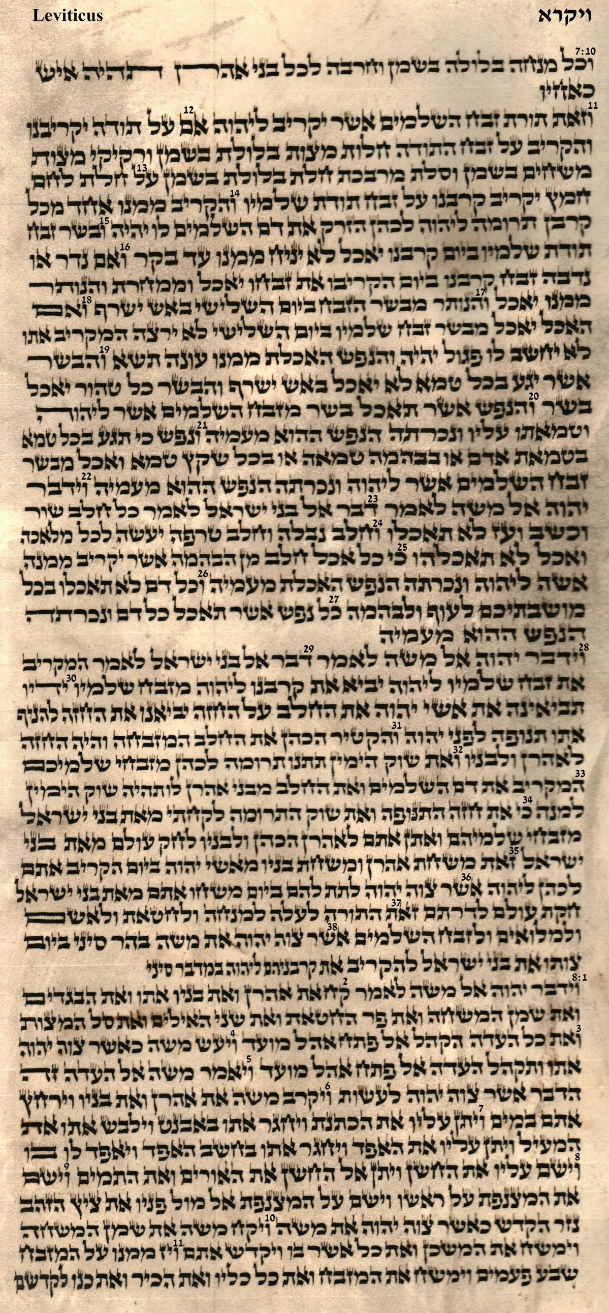 Leviticus 7.10 - 8.11