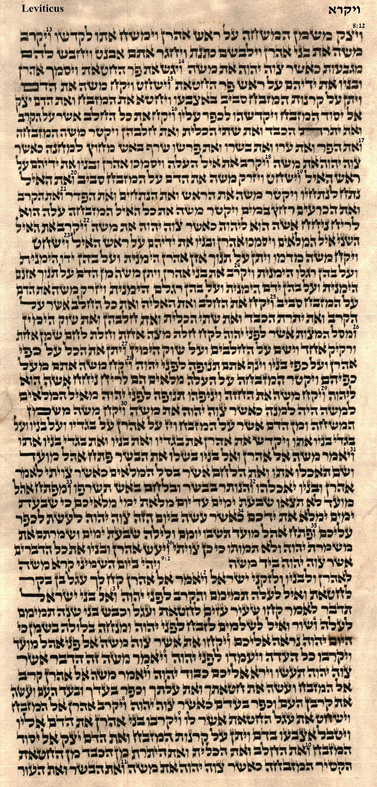 Leviticus 8.12 - 9.11