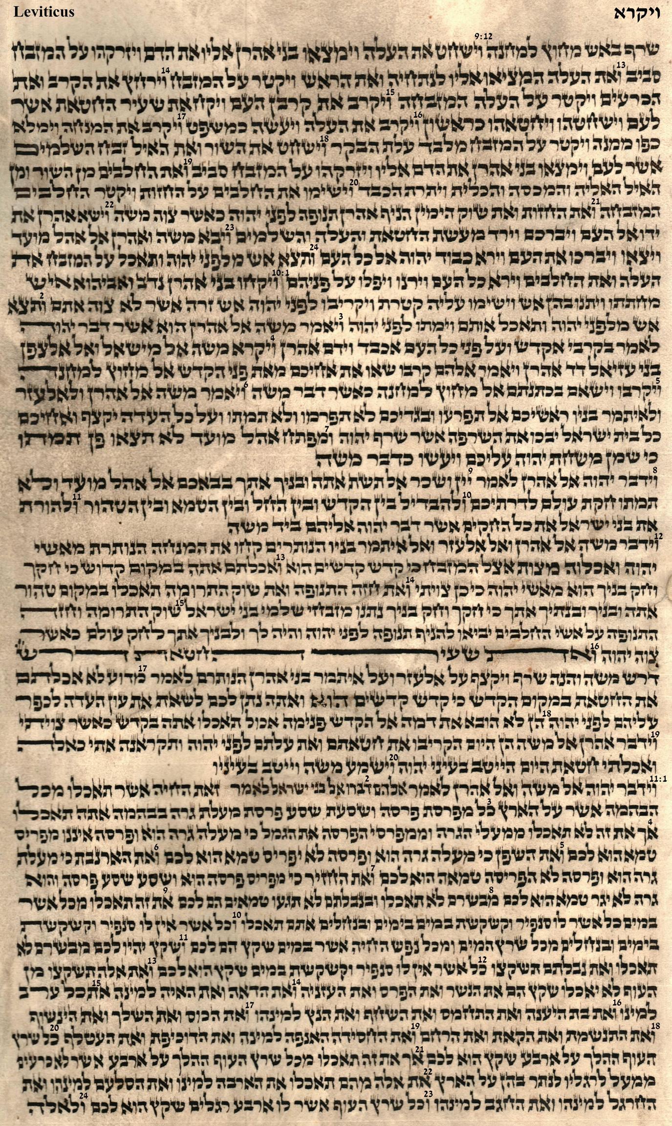 Leviticus 9.12 - 11.24