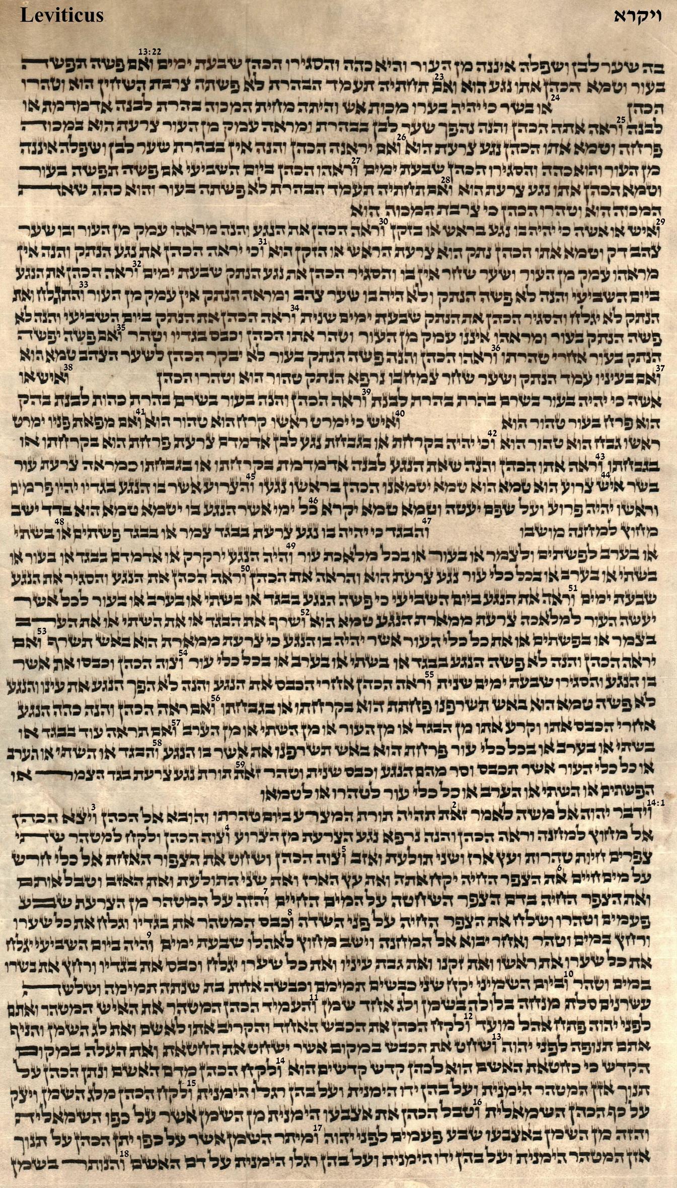 Leviticus 13.22 - 14.18